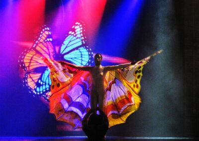 Schmetterling - Bild von Karin Günther