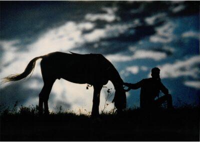 Pferd- Bild von Karin Günther