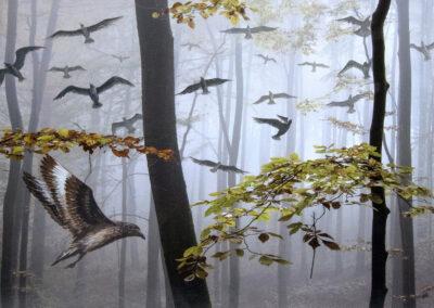 Vögel im Wald - Bild von Karin Günther und Werner Baur